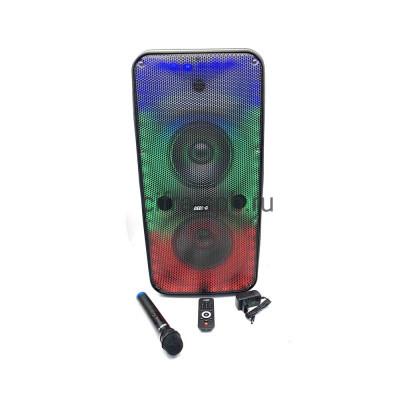 Беспроводная колонка GD-2808 + пульт + беспроводной микрофон черный GEDI-G купить оптом | cifra-spb.ru