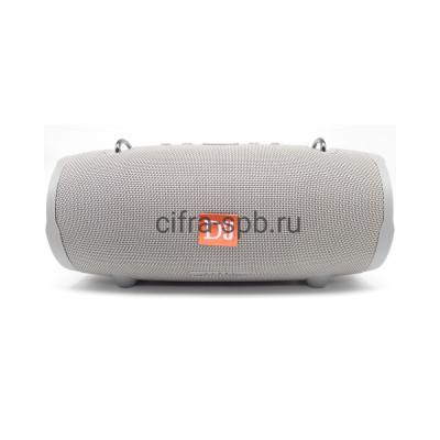 Беспроводная колонка XTREME 2 (S62 ) серый купить оптом | cifra-spb.ru