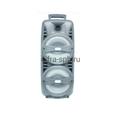 Беспроводная колонка LIGE-2804 с проводным микрофоном черный купить оптом | cifra-spb.ru