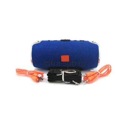 Беспроводная колонка XTREME S6S mini большая коробка синий купить оптом | cifra-spb.ru