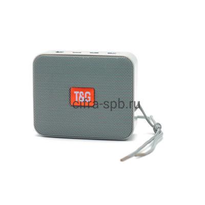 Беспроводная колонка TG-166 серый T&G купить оптом | cifra-spb.ru