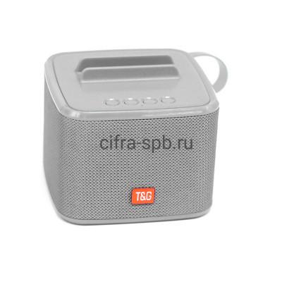 Беспроводная колонка TG-801 серый T&G купить оптом | cifra-spb.ru