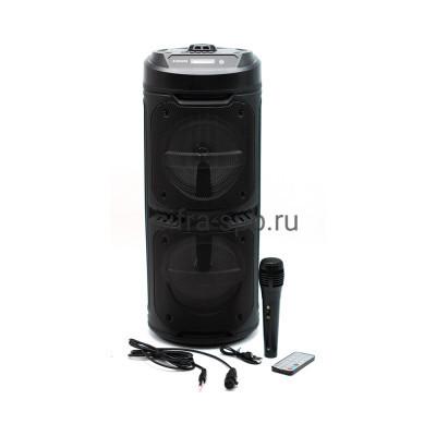 Беспроводная колонка ZQS-6209 + проводной микрофон + пульт черный купить оптом | cifra-spb.ru