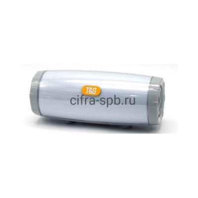 Беспроводная колонка TG-165C серый T&G купить оптом   cifra-spb.ru