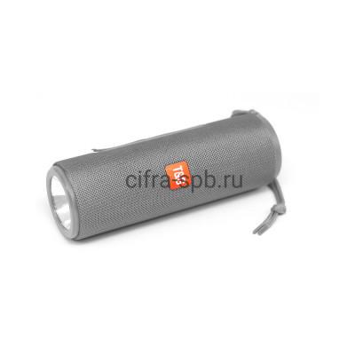 Беспроводная колонка TG-604 + фонарь серый T&G купить оптом | cifra-spb.ru