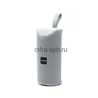 Беспроводная колонка BR5 серый Borofone купить оптом | cifra-spb.ru