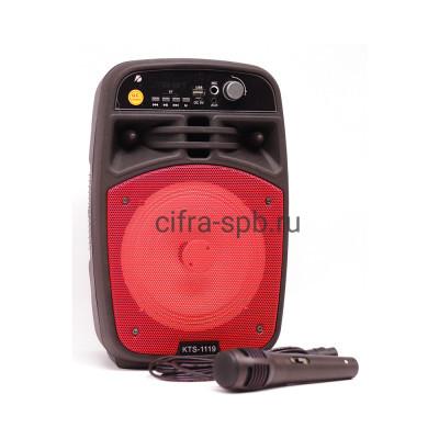 Беспроводная колонка KTS-1119 + пульт/микрофон черно-красный KTS купить оптом | cifra-spb.ru