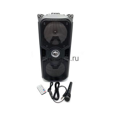 Беспроводная колонка DG-1088 + пульт + проводной микрофон черный купить оптом | cifra-spb.ru