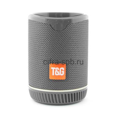Беспроводная колонка TG-528 серый T&G купить оптом | cifra-spb.ru