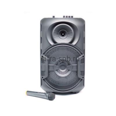 Беспроводная колонка ZQS-12106 + пульт + беспроводной микрофон черный купить оптом | cifra-spb.ru