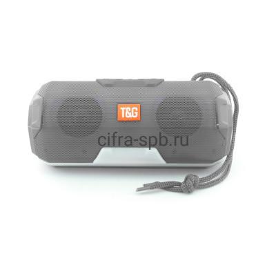 Беспроводная колонка TG-143 серый T&G купить оптом | cifra-spb.ru